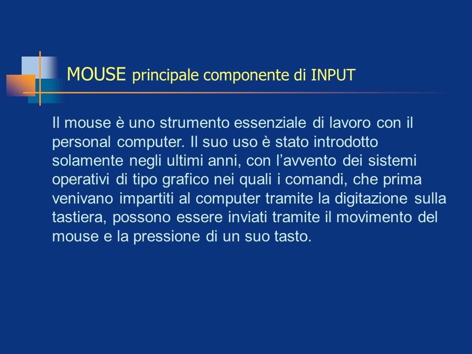 MOUSE principale componente di INPUT