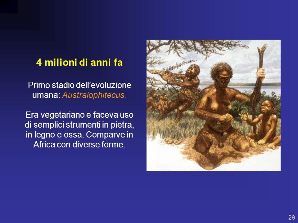 Primo stadio dell'evoluzione umana: Australophitecus.