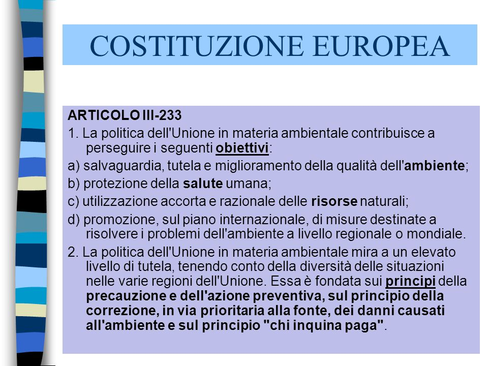 COSTITUZIONE EUROPEA ARTICOLO III-233