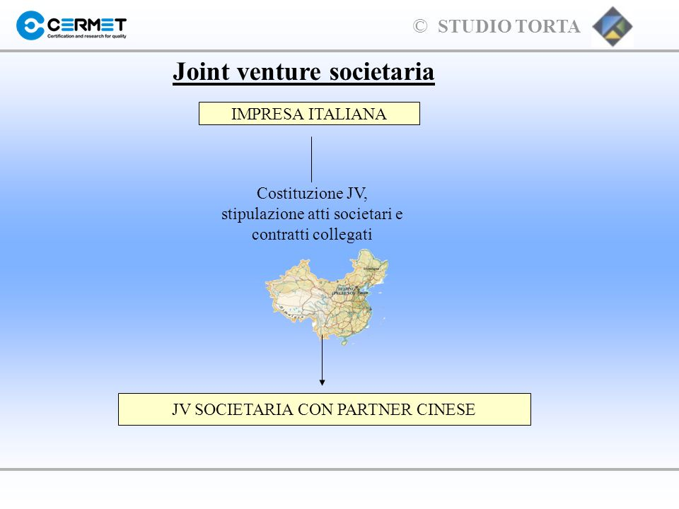 Joint venture societaria