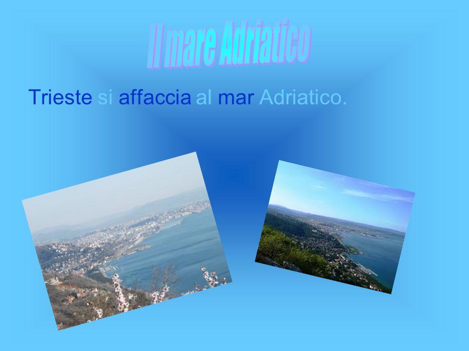 Il mare Adriatico Trieste si affaccia al mar Adriatico.