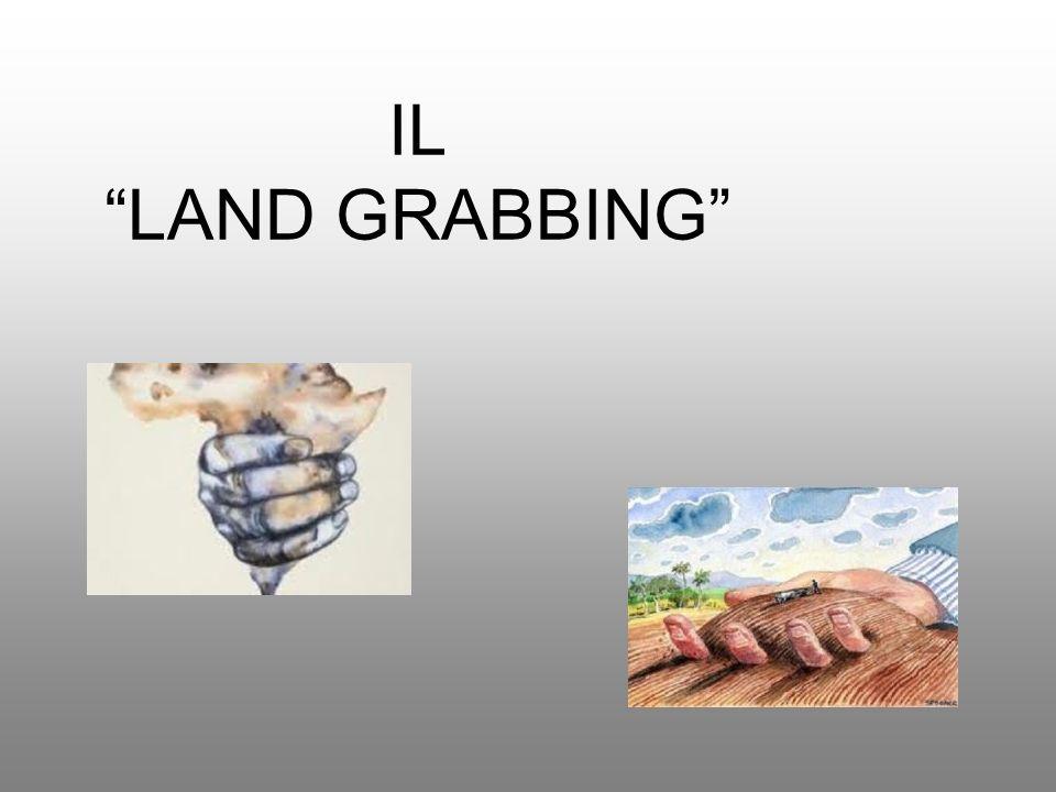 IL LAND GRABBING