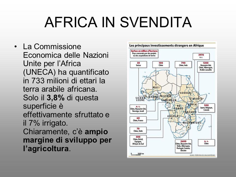 AFRICA IN SVENDITA