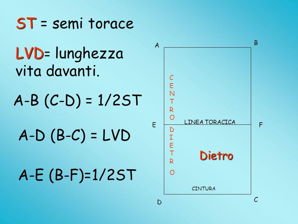LVD= lunghezza vita davanti.