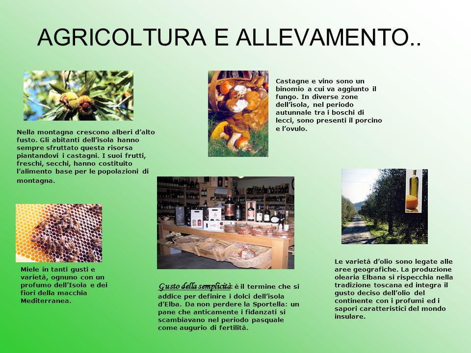 AGRICOLTURA E ALLEVAMENTO..