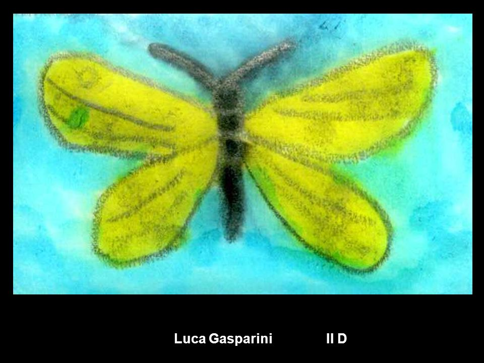 Luca Gasparini II D