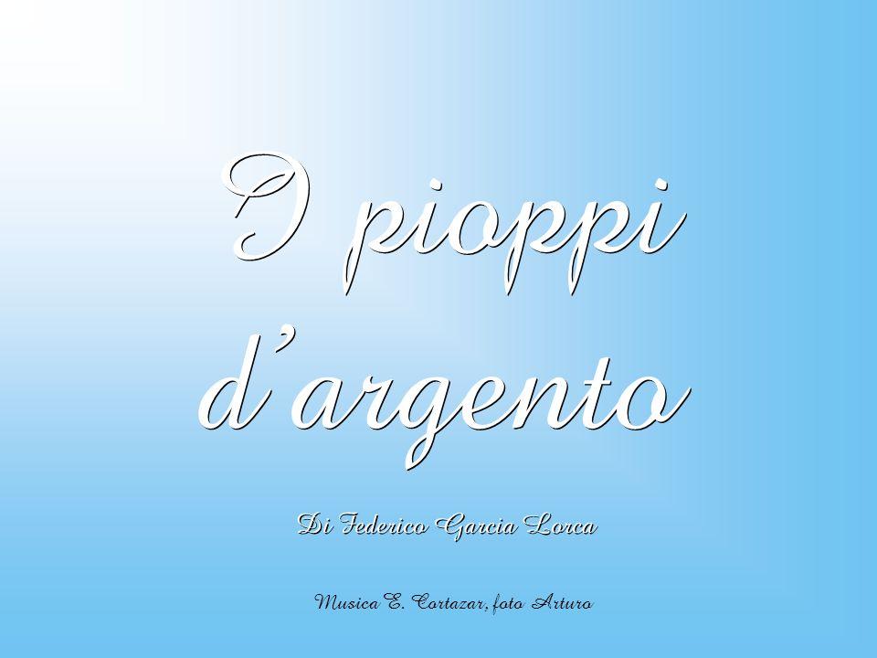 I pioppi d'argento Di Federico Garcia Lorca