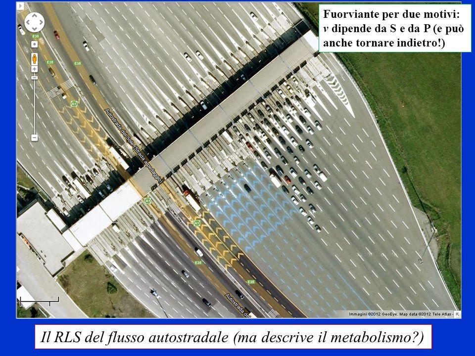 Il RLS del flusso autostradale (ma descrive il metabolismo )