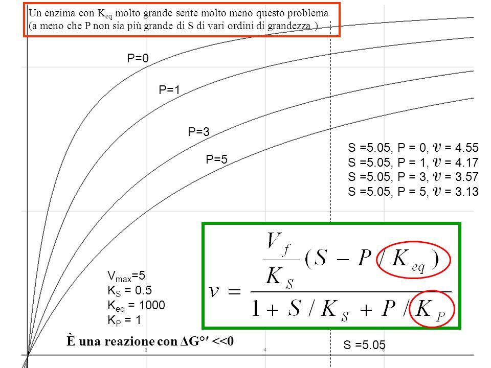 È una reazione con ΔG°′ <<0