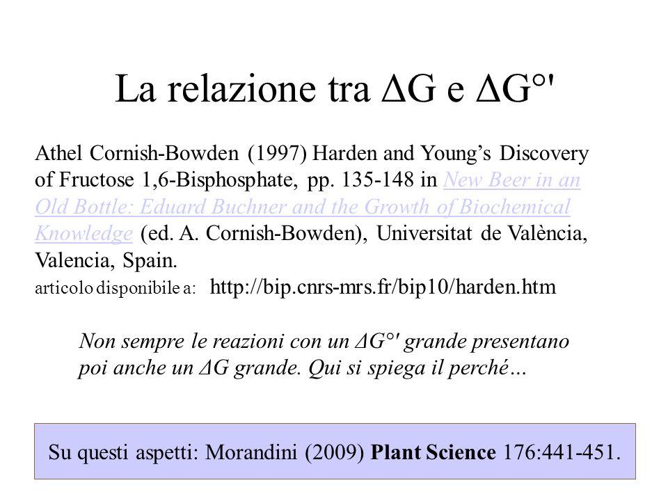 La relazione tra ΔG e ΔG°