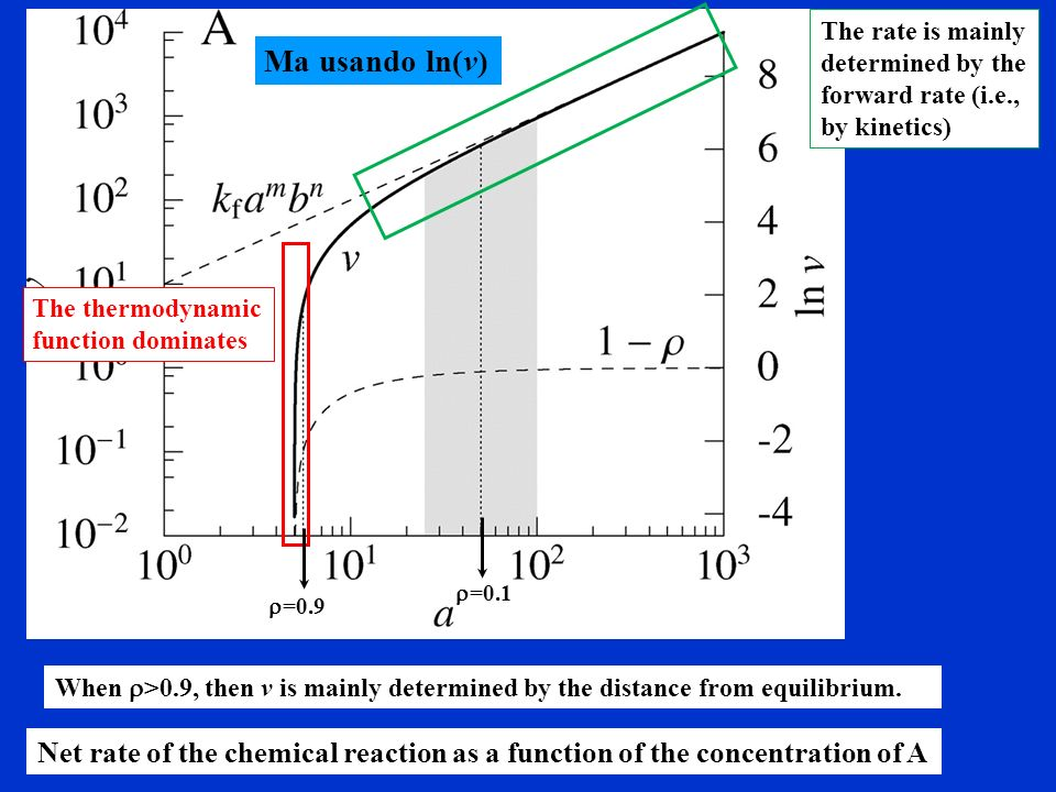 The rate is mainly determined by the forward rate (i.e., by kinetics)