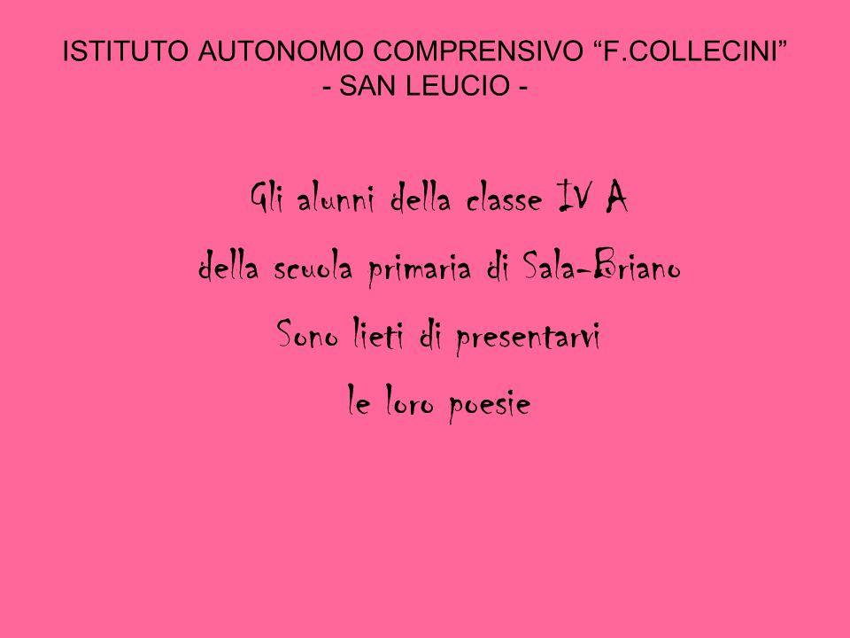 ISTITUTO AUTONOMO COMPRENSIVO F.COLLECINI - SAN LEUCIO -