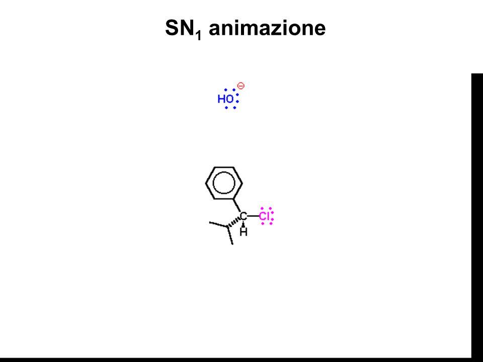 SN1 animazione