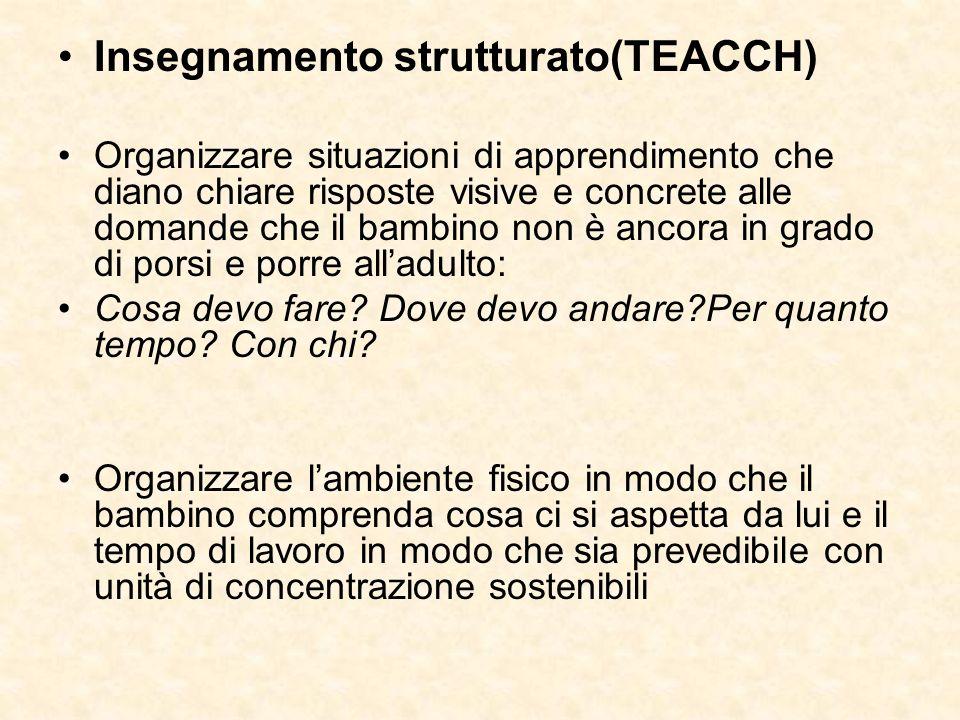 Insegnamento strutturato(TEACCH)