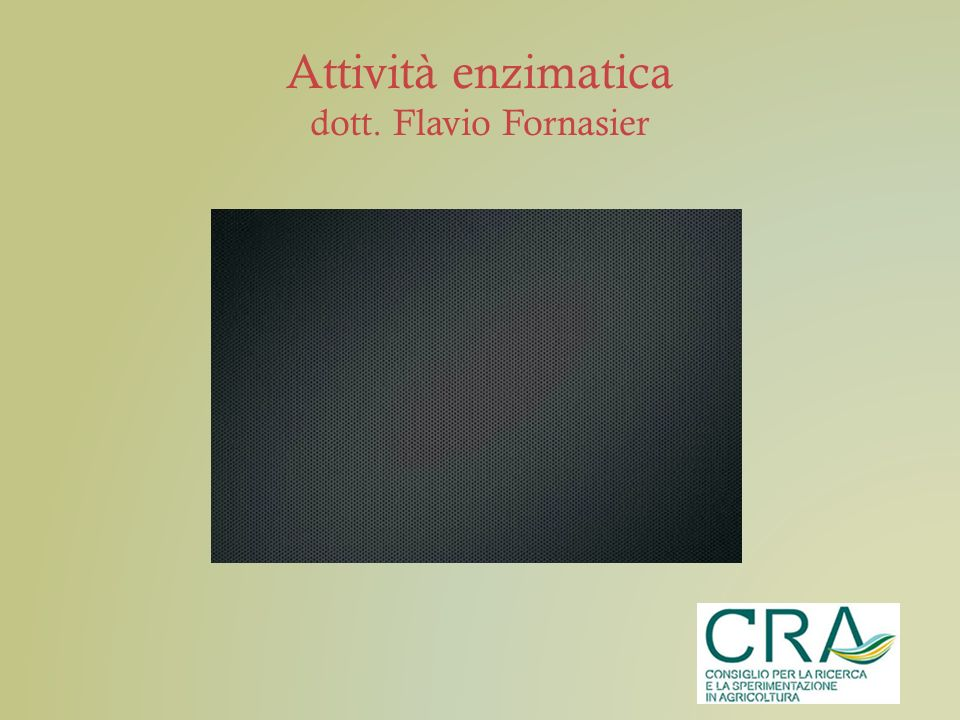 Attività enzimatica dott. Flavio Fornasier