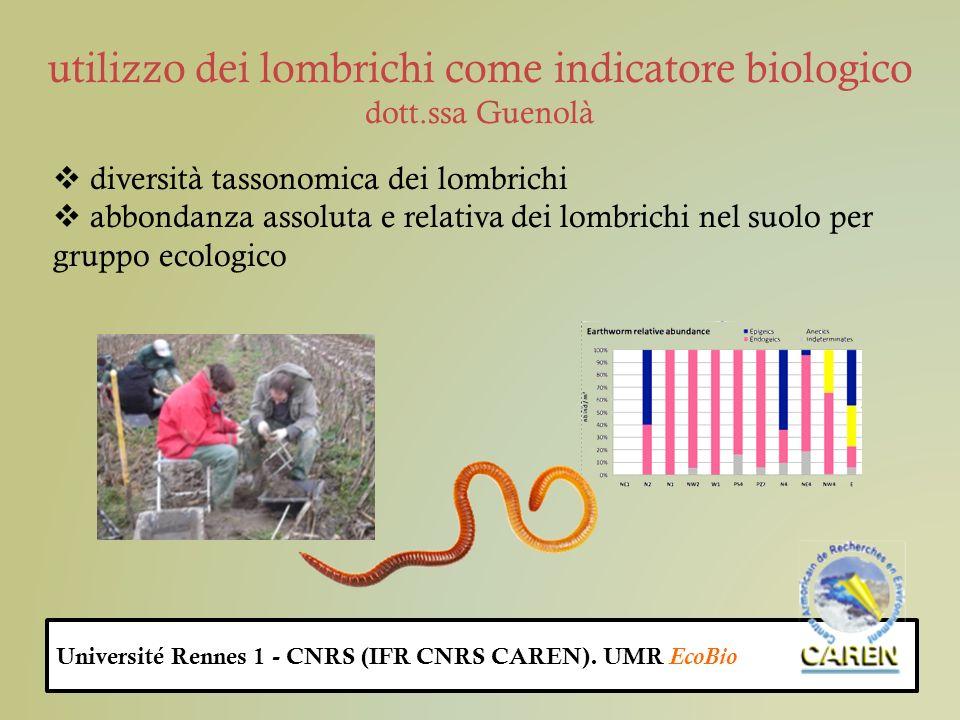 utilizzo dei lombrichi come indicatore biologico dott.ssa Guenolà