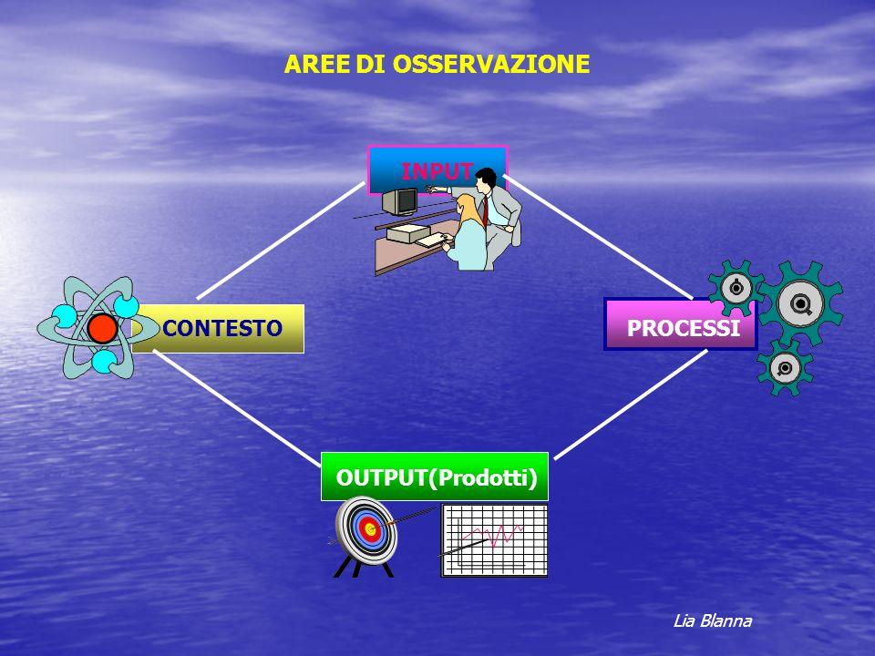 AREE DI OSSERVAZIONE INPUT CONTESTO PROCESSI OUTPUT(Prodotti)