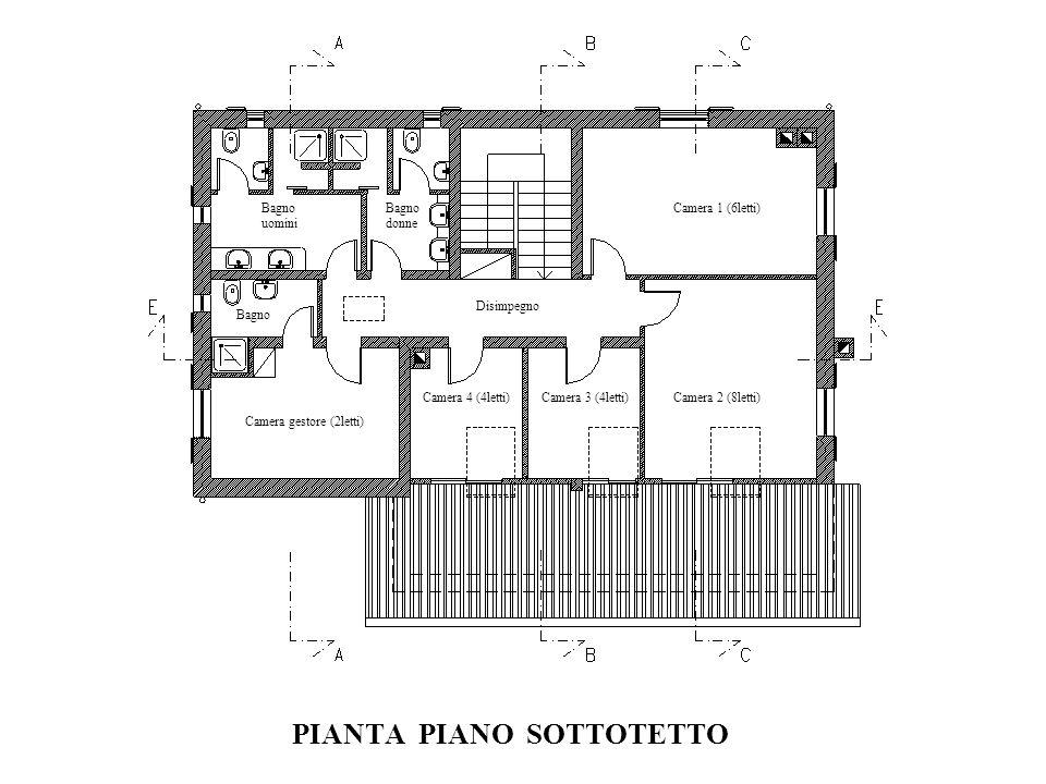 PIANTA PIANO SOTTOTETTO