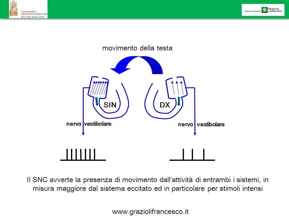 movimento della testa SIN DX