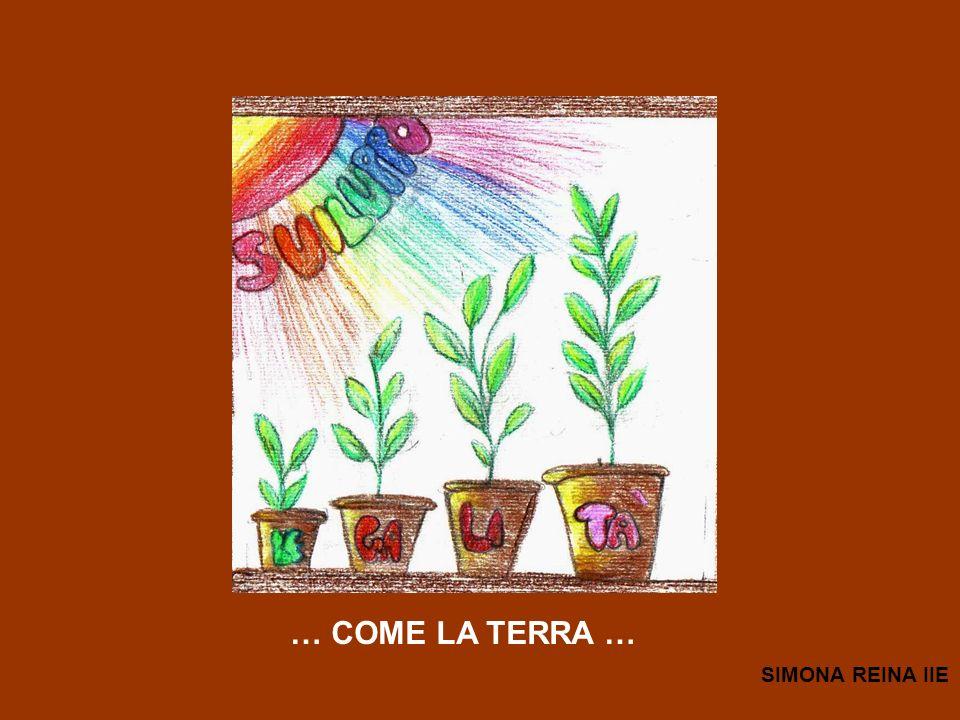 … COME LA TERRA … SIMONA REINA IIE