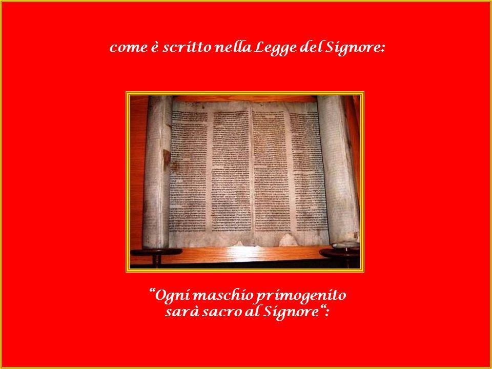 come è scritto nella Legge del Signore: