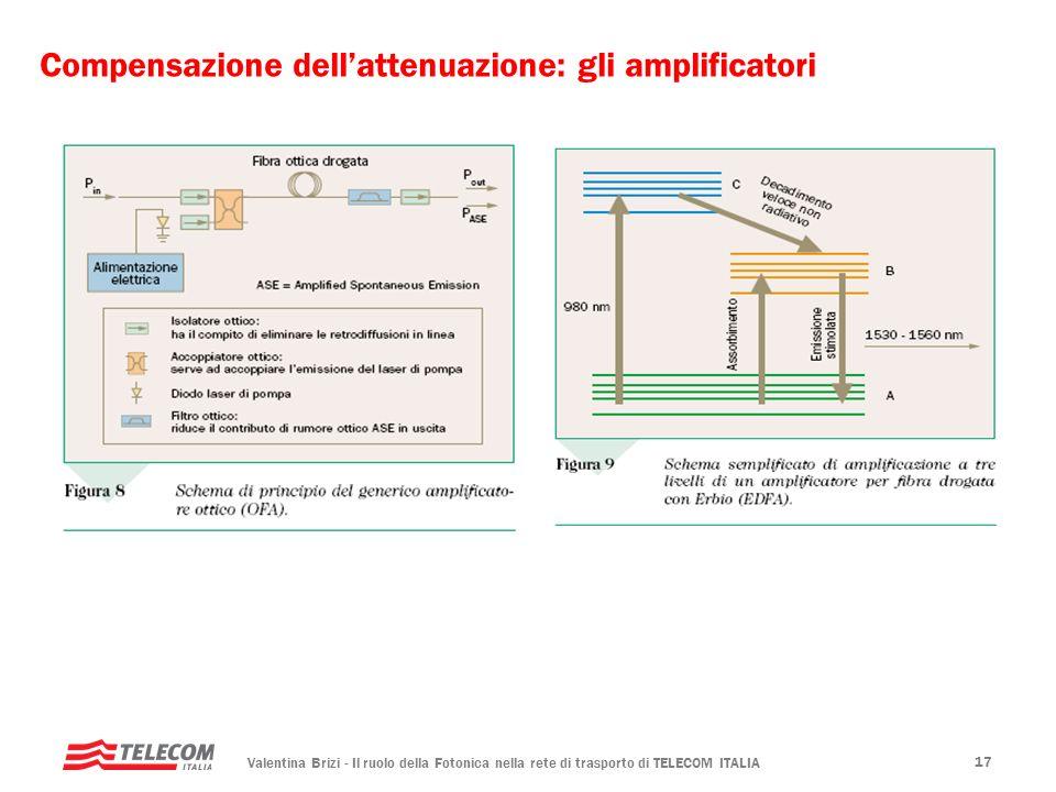 Compensazione dell'attenuazione: gli amplificatori