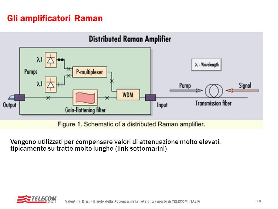 Gli amplificatori Raman