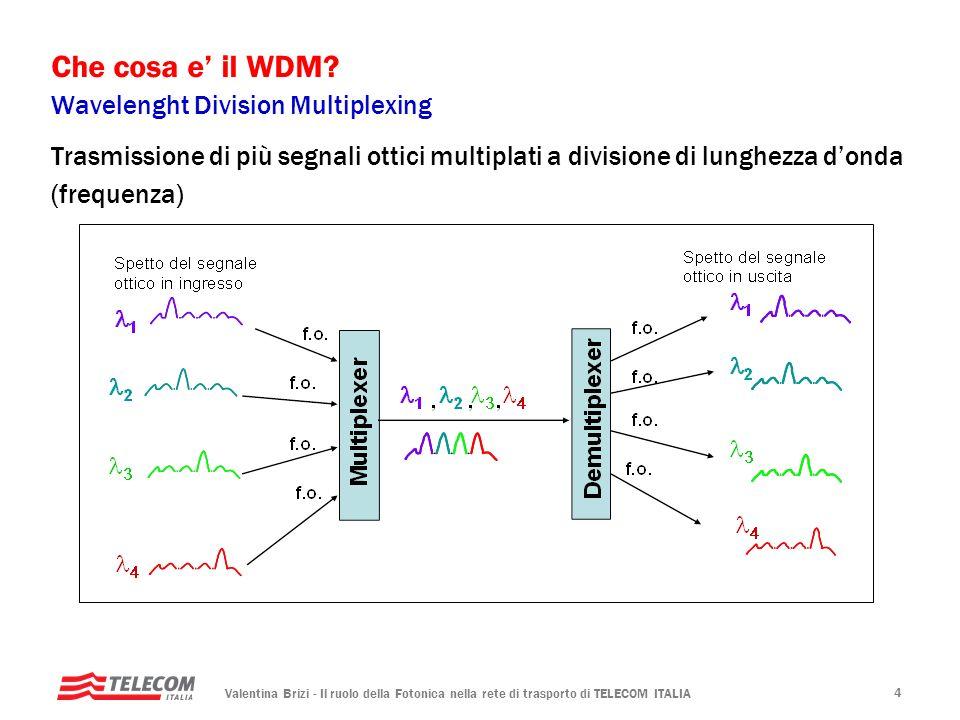 Che cosa e' il WDM Wavelenght Division Multiplexing