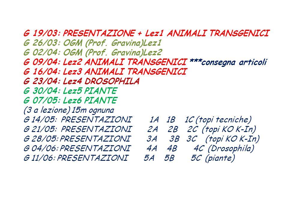 G 19/03: PRESENTAZIONE + Lez1 ANIMALI TRANSGENICI