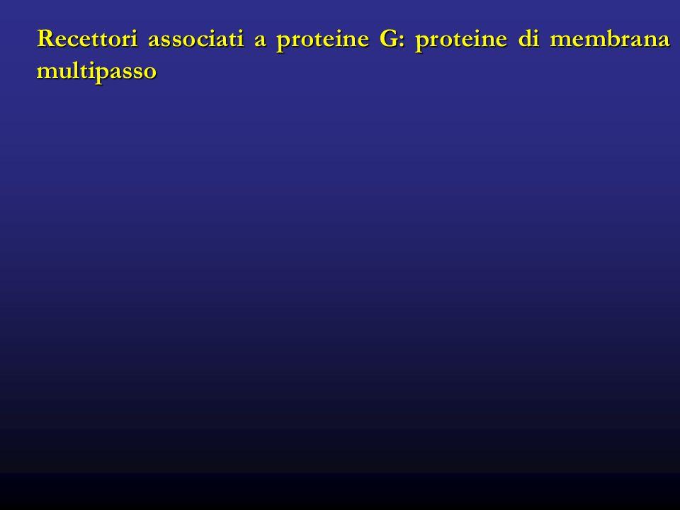 Recettori associati a proteine G: proteine di membrana multipasso