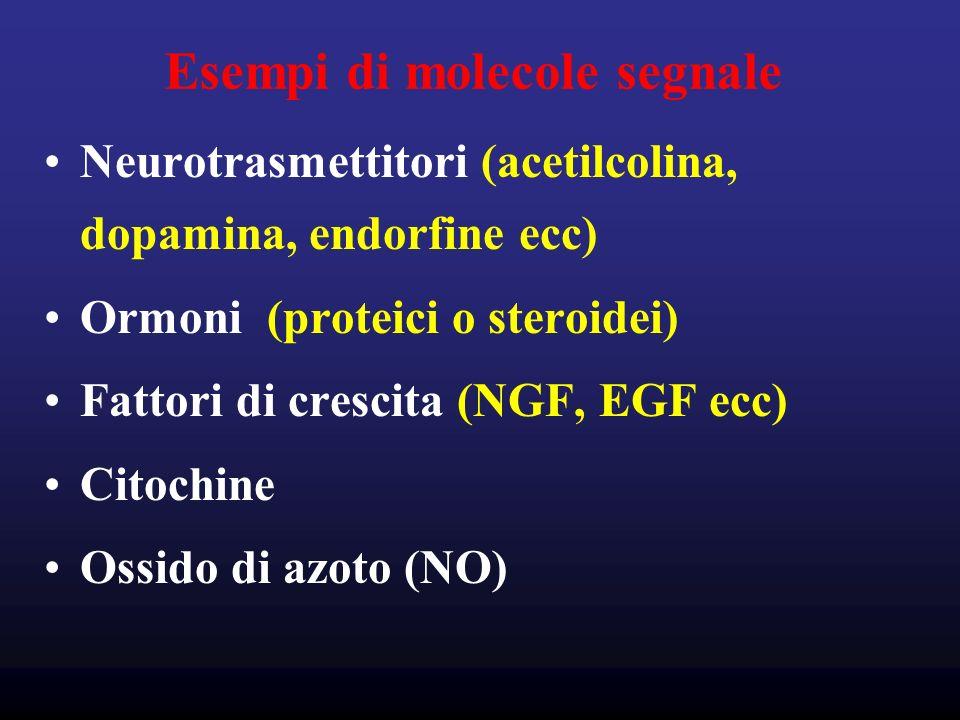 Esempi di molecole segnale