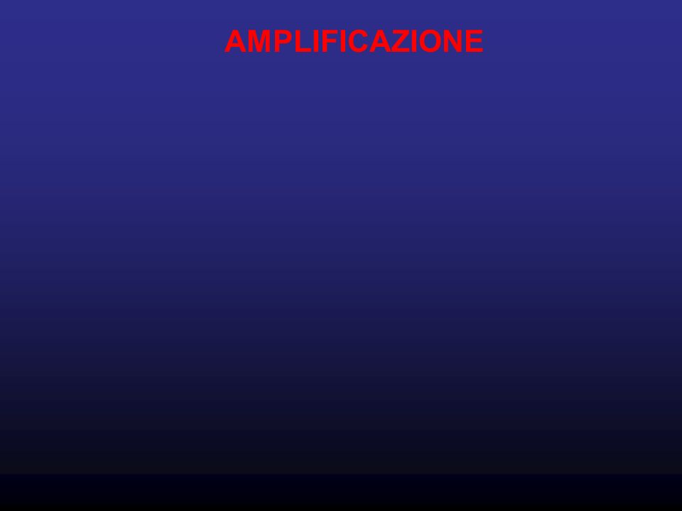 AMPLIFICAZIONE