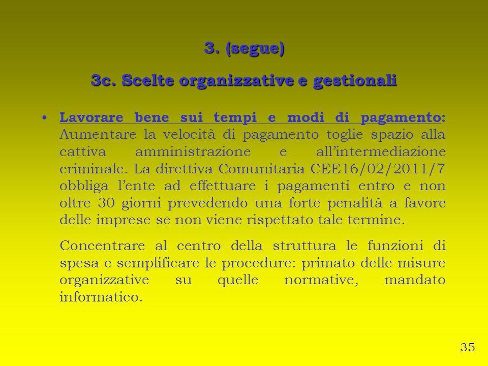 3. (segue) 3c. Scelte organizzative e gestionali