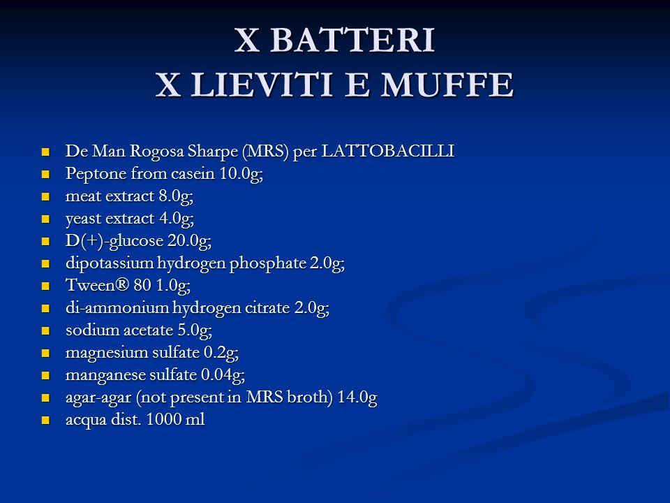 X BATTERI X LIEVITI E MUFFE