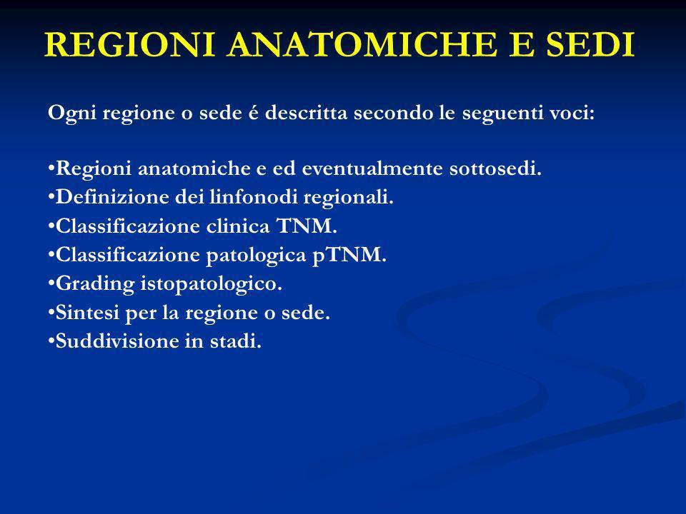 REGIONI ANATOMICHE E SEDI