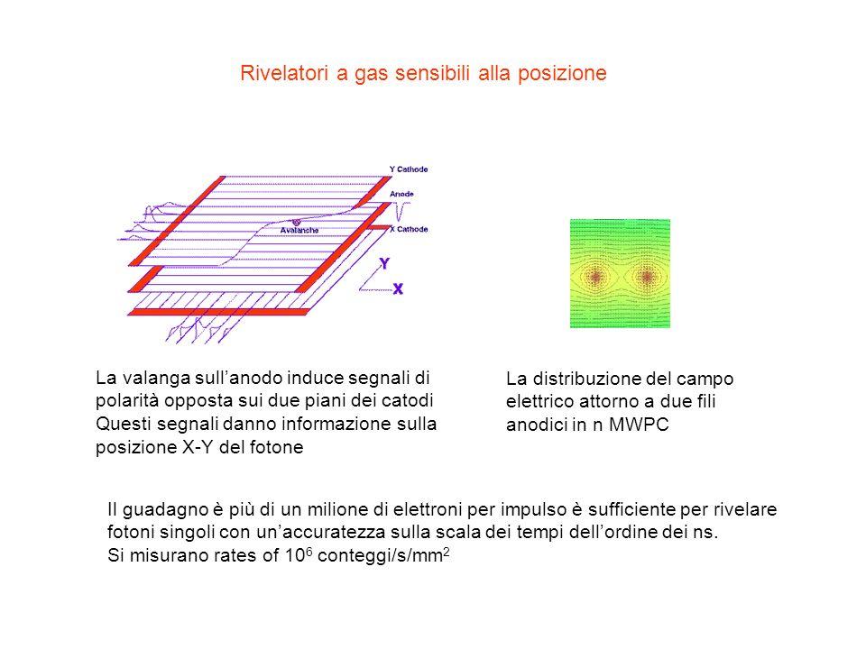 Rivelatori a gas sensibili alla posizione
