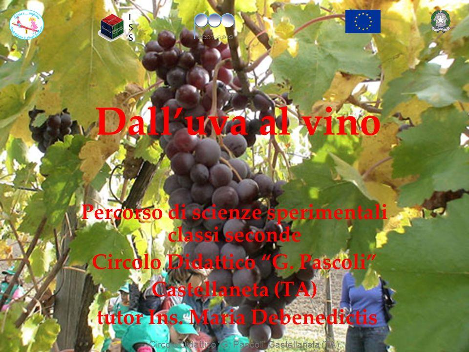 Dall'uva al vino Percorso di scienze sperimentali classi seconde
