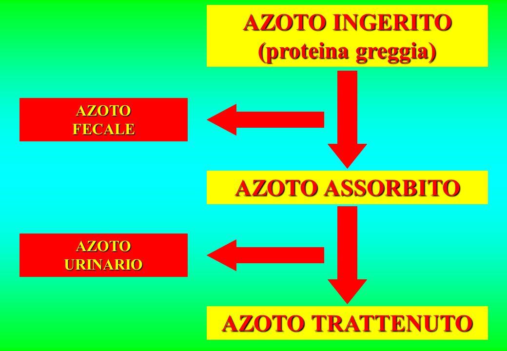 AZOTO INGERITO (proteina greggia) AZOTO ASSORBITO AZOTO TRATTENUTO