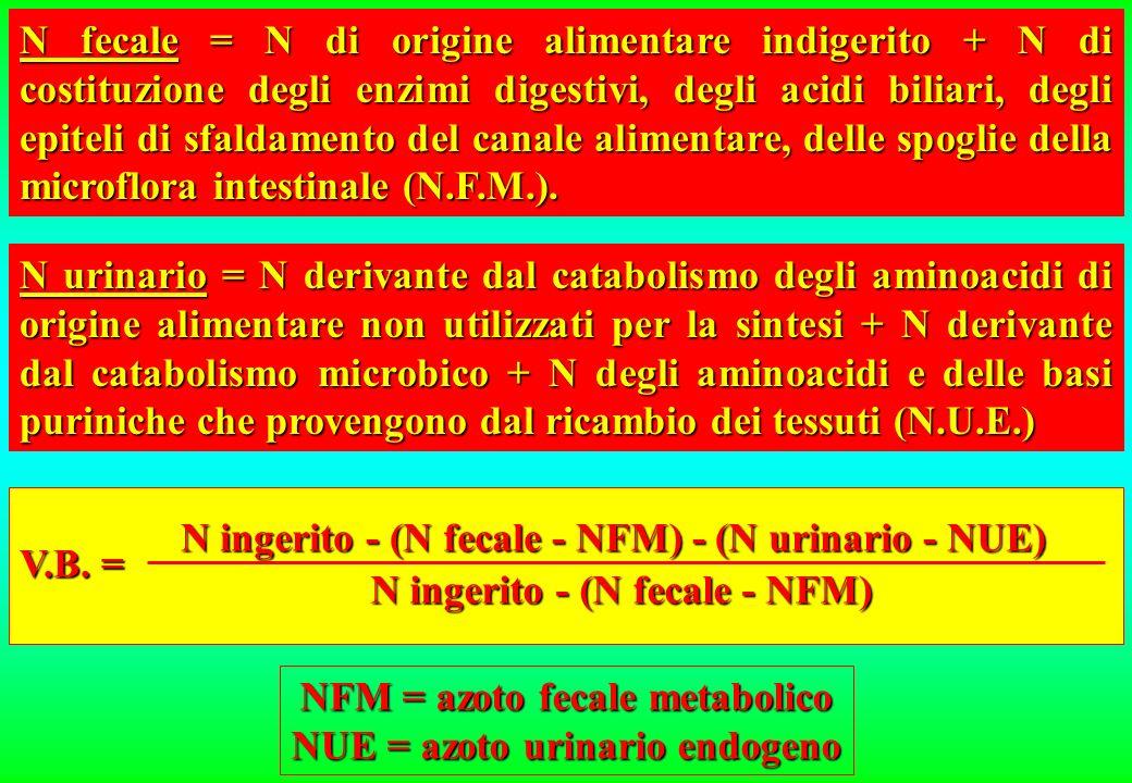 NFM = azoto fecale metabolico NUE = azoto urinario endogeno