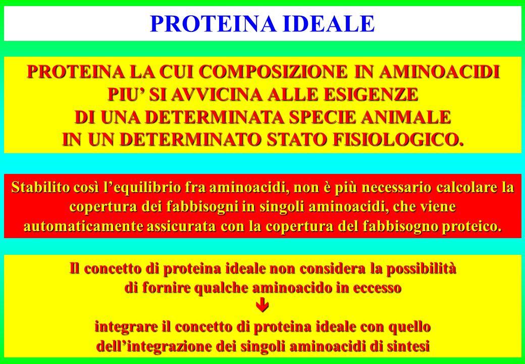 PROTEINA IDEALE PROTEINA LA CUI COMPOSIZIONE IN AMINOACIDI PIU' SI AVVICINA ALLE ESIGENZE. DI UNA DETERMINATA SPECIE ANIMALE.