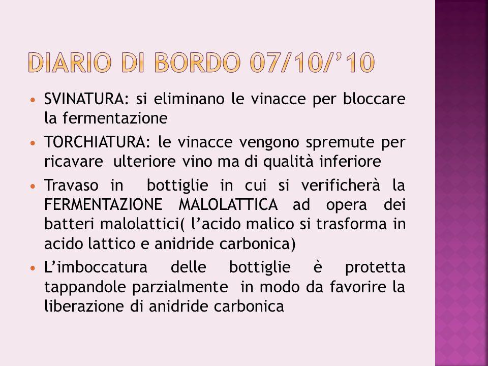 Diario di bordo 07/10/'10SVINATURA: si eliminano le vinacce per bloccare la fermentazione.