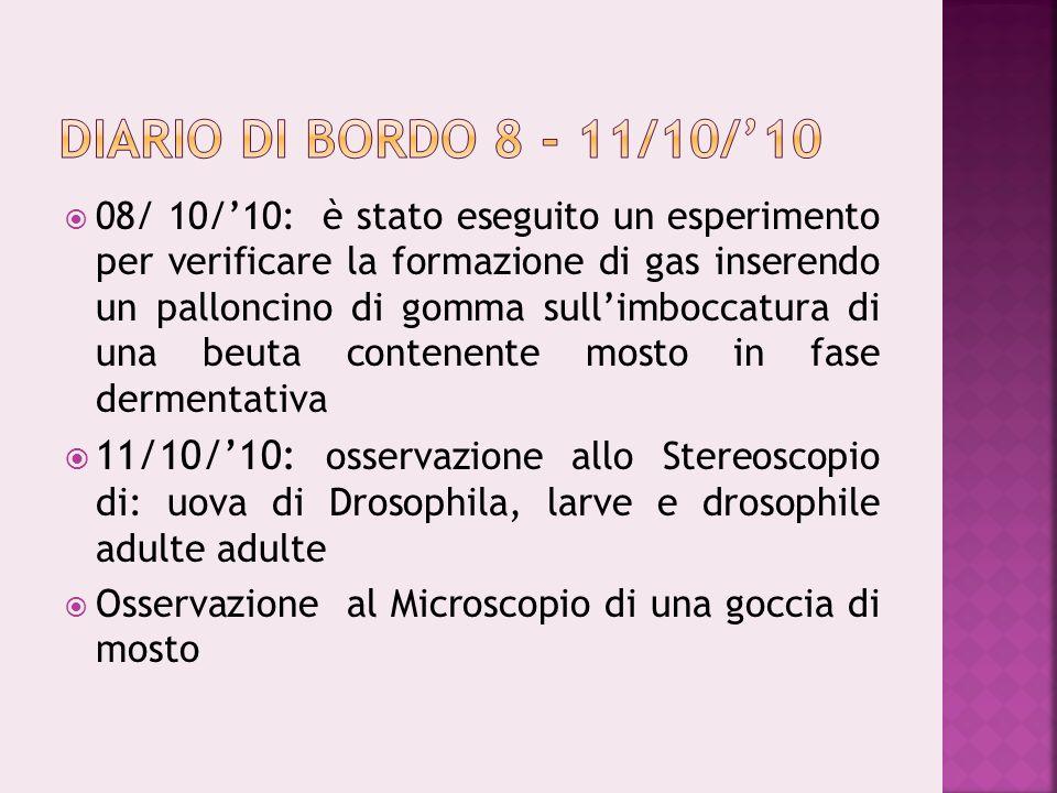 Diario di bordo 8 - 11/10/'10