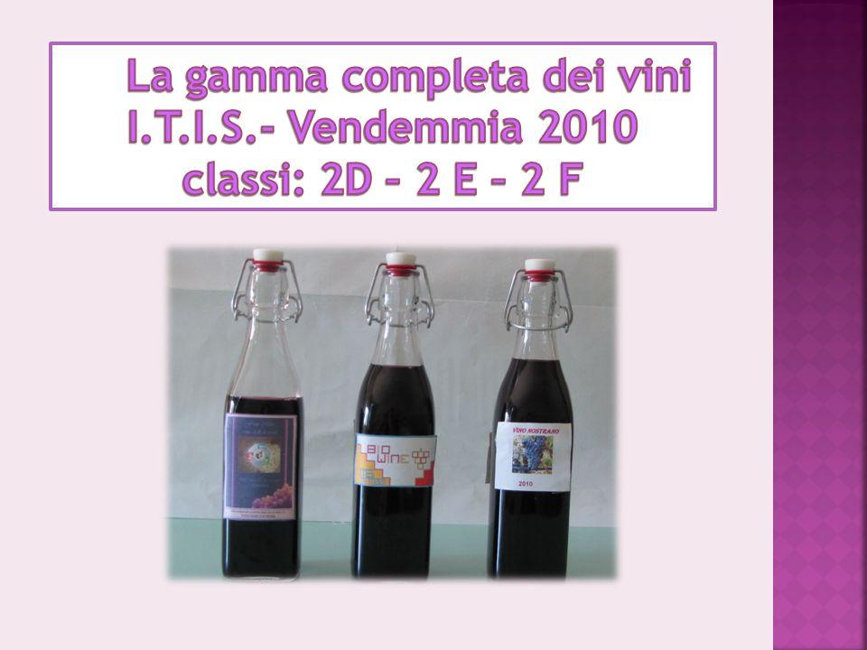 La gamma completa dei vini I. T. I. S