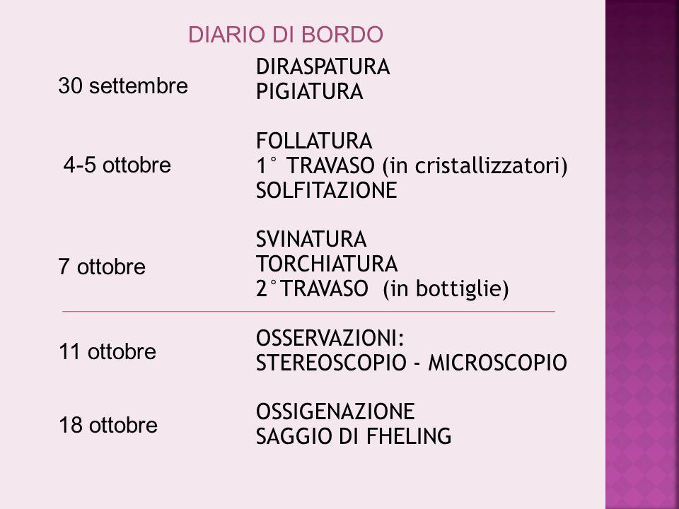DIARIO DI BORDO COMPLESSIVO