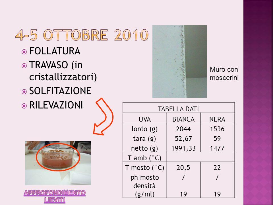 4-5 ottobre 2010 FOLLATURA TRAVASO (in cristallizzatori) SOLFITAZIONE
