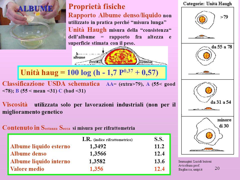 Proprietà fisiche ALBUME Unità haug = 100 log (h - 1,7 P0,37 + 0,57)