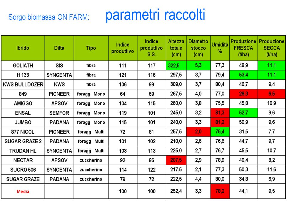 Sorgo biomassa ON FARM: parametri raccolti