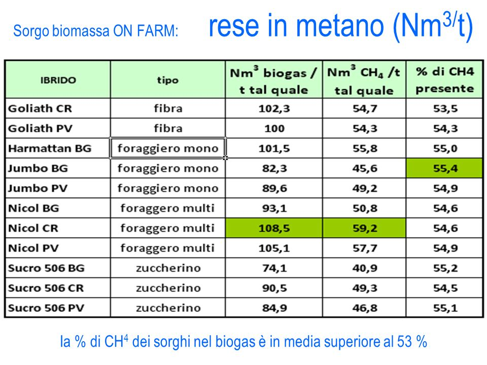 Sorgo biomassa ON FARM: rese in metano (Nm3/t)