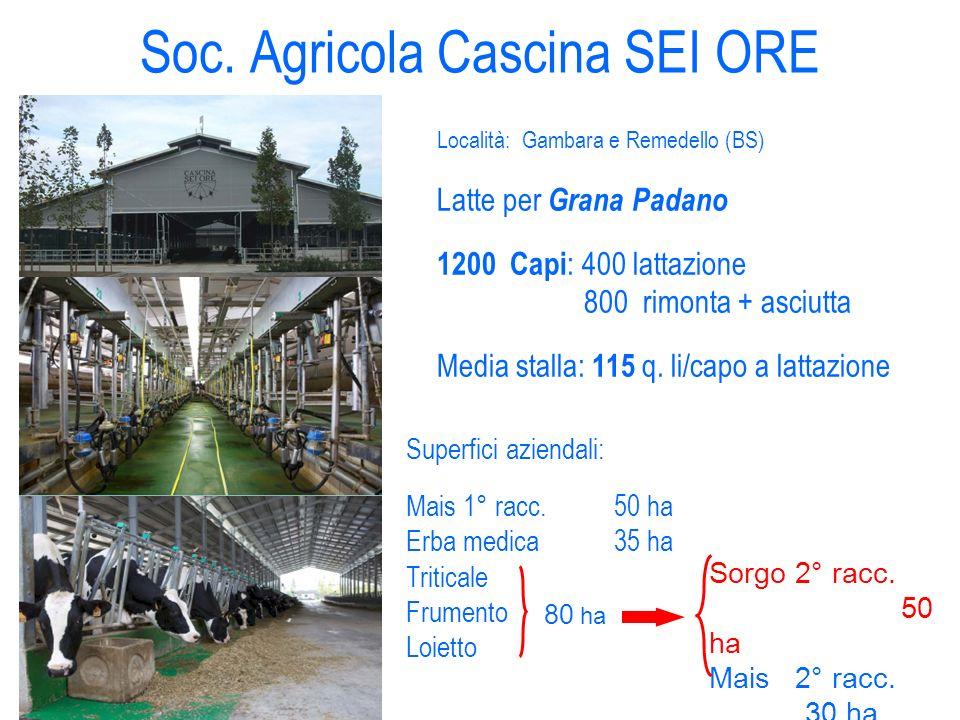 Soc. Agricola Cascina SEI ORE