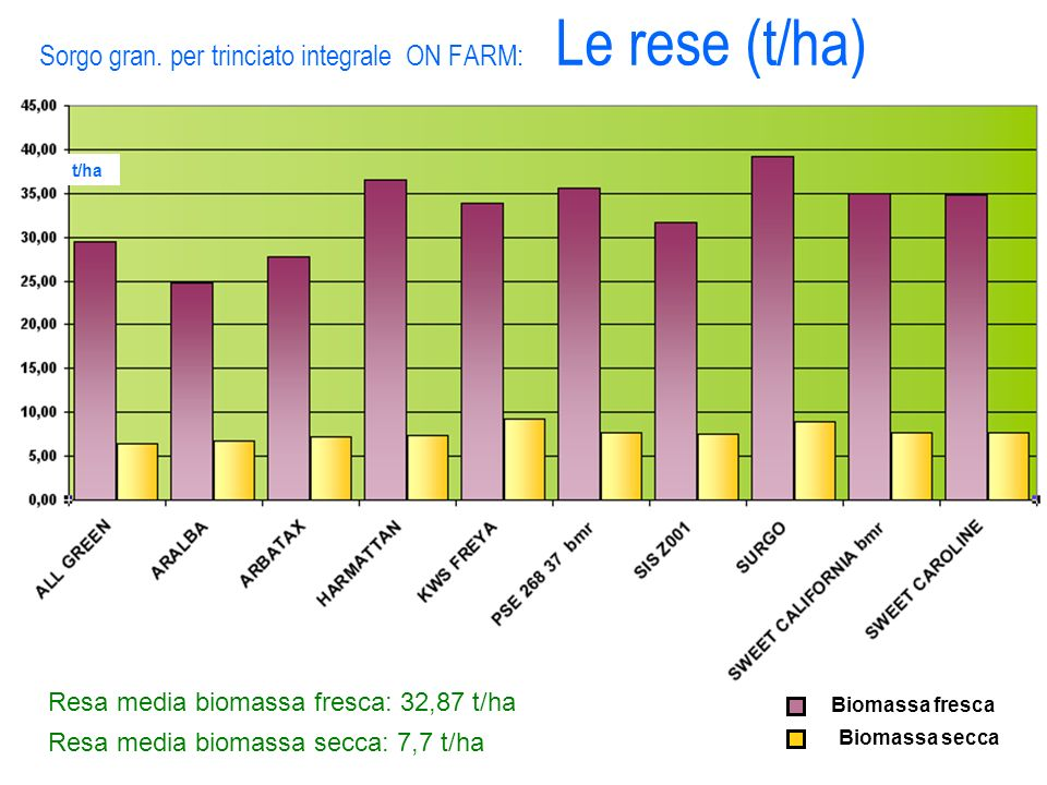 Sorgo gran. per trinciato integrale ON FARM: Le rese (t/ha)